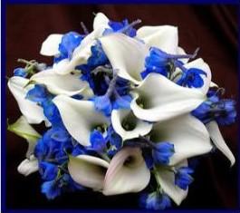 calla lillies delphinium