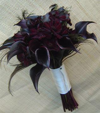 calla lillies peacock